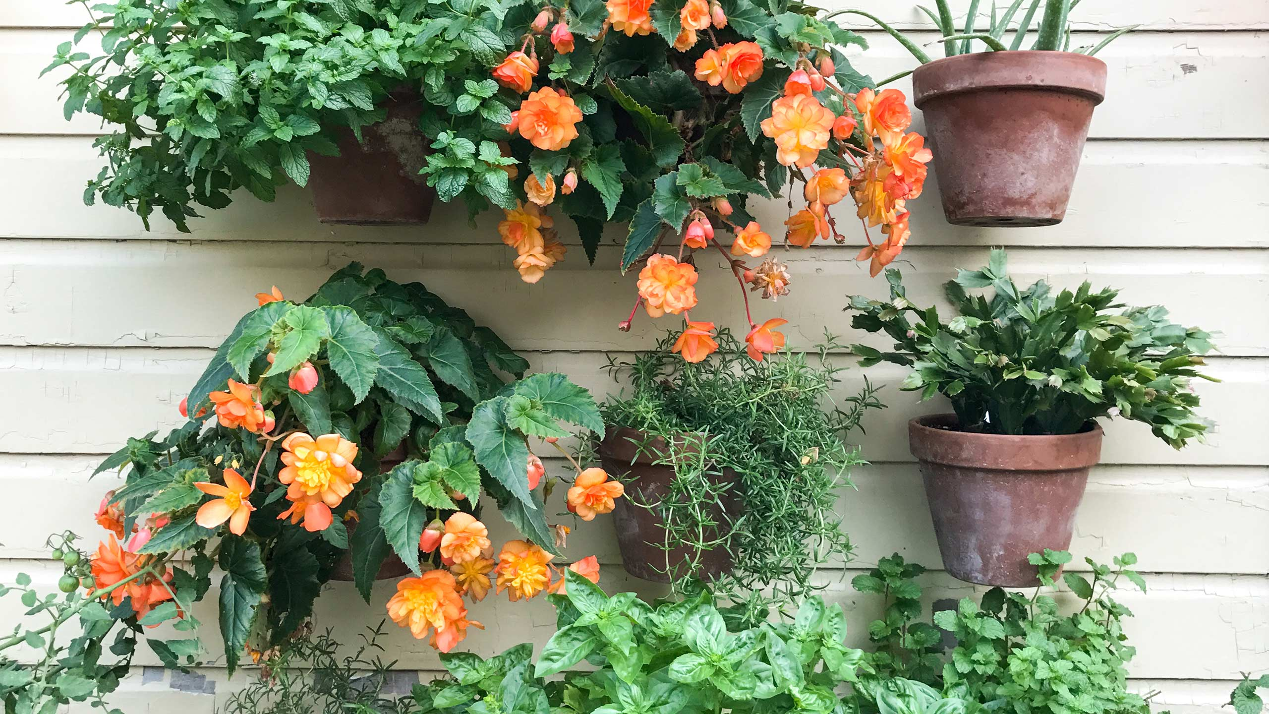 3 Ways To Grow A Garden Whatever Your Situation Mulhall S